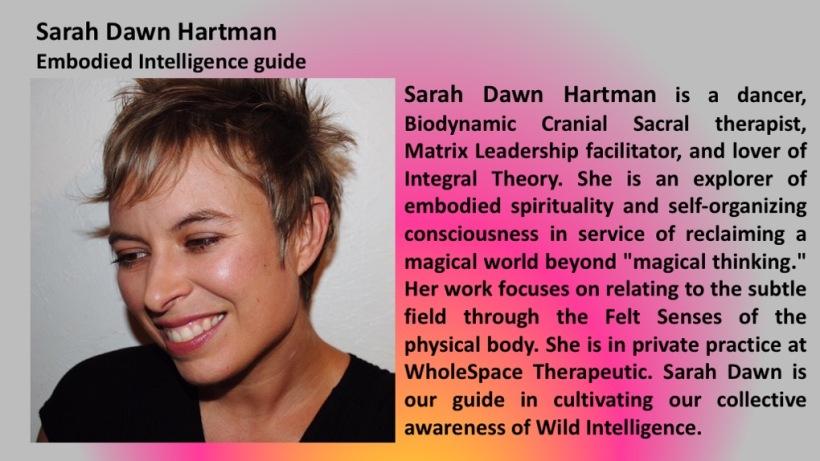 Sarah Dawn panel.jpg